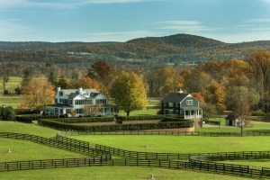 36_Mosby_N_Horse_Farm