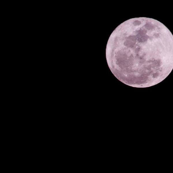 Hello photographers, the moon is awesome tonight