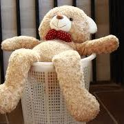 teddy bear cleaning