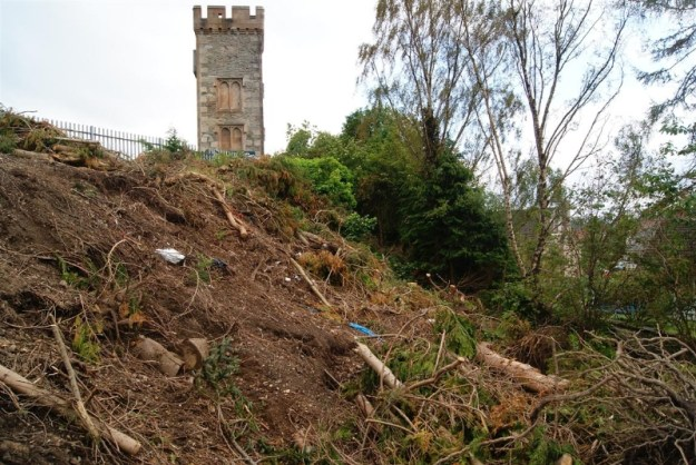 Waste land - trees were cut down in 2011