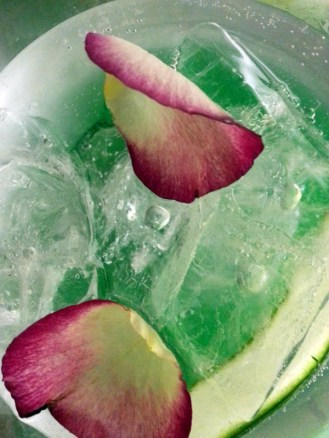 Hendricks gin and tonic served with cucumber and fresh rose petals