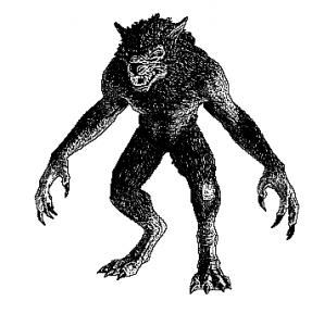 werewolf865_sketch