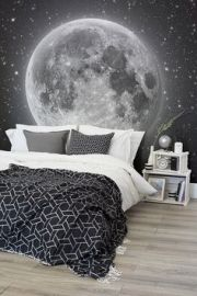 moon-wall