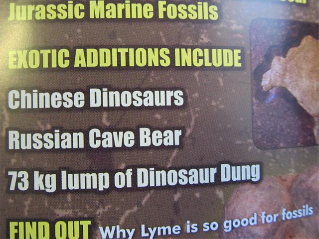161 pounds of dinosaur turd?