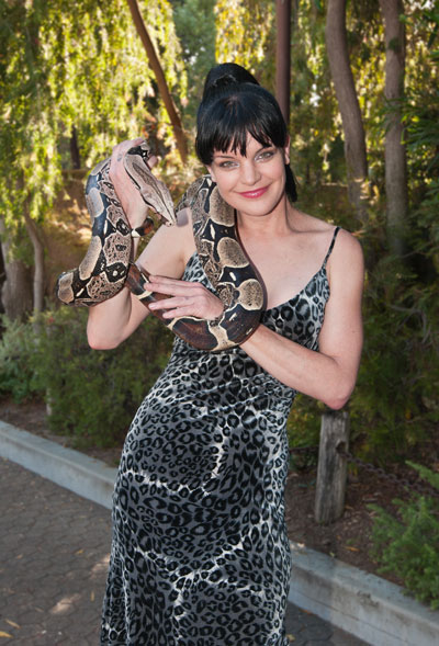 Pauley Perrette and a friendly boa at the 2011 Beastly Ball Photo by Jamie Pham