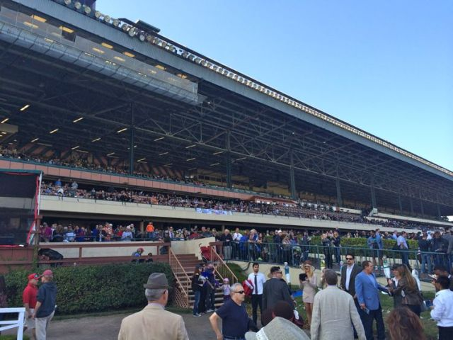 The grandstand at Hollywood Park (photo by Nikki Kreuzer)