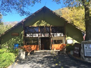 The museum at Oak Tree Village, specializing in stuffed animals and live reptiles (photo by Nikki Kreuzer)