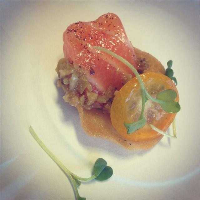 salmon (Medium)