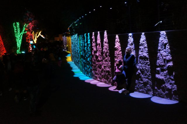 Zoo Lights Griffith Park