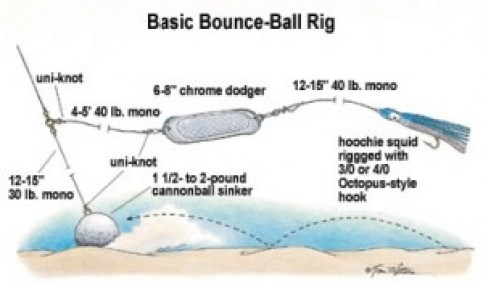 halibut fishing tutorial - the lost anchovy halibut rig diagram