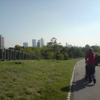 Mile End to Canary Wharf