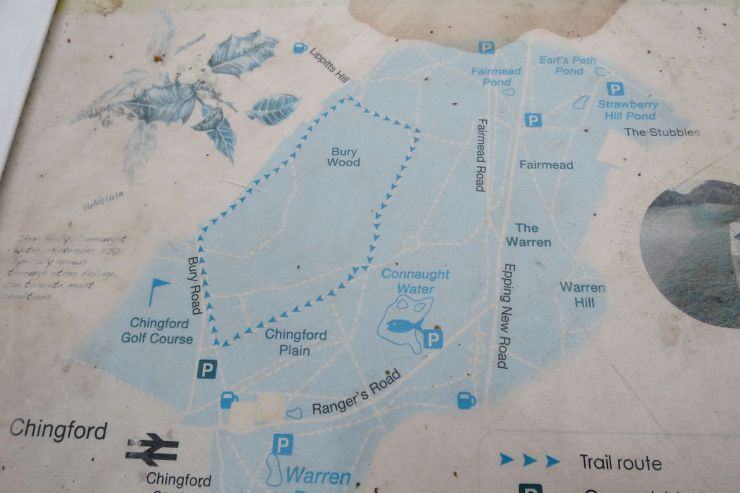 Epping Forest Chingford Map