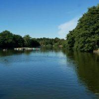 A walk through Ilford along the Cran Brook