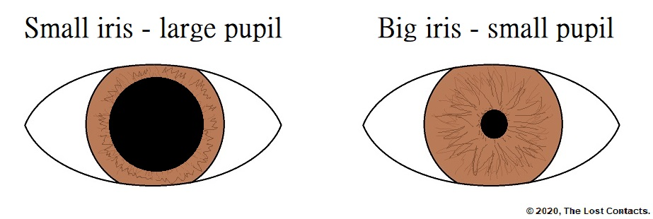 Diagram of large vs small pupil