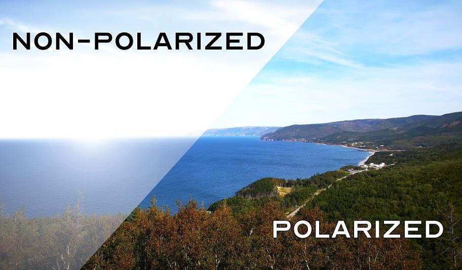 Polarized Vs Non-Polarized