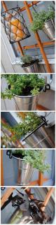 Hanging_Trellis_Herb_Garden_large