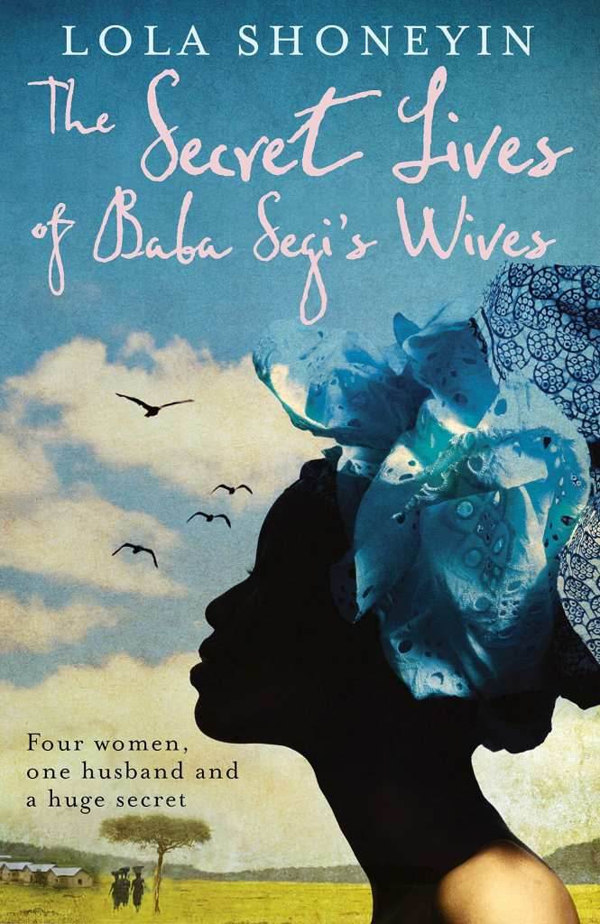 30 books to read during quarantine - secret live of baba segis wives