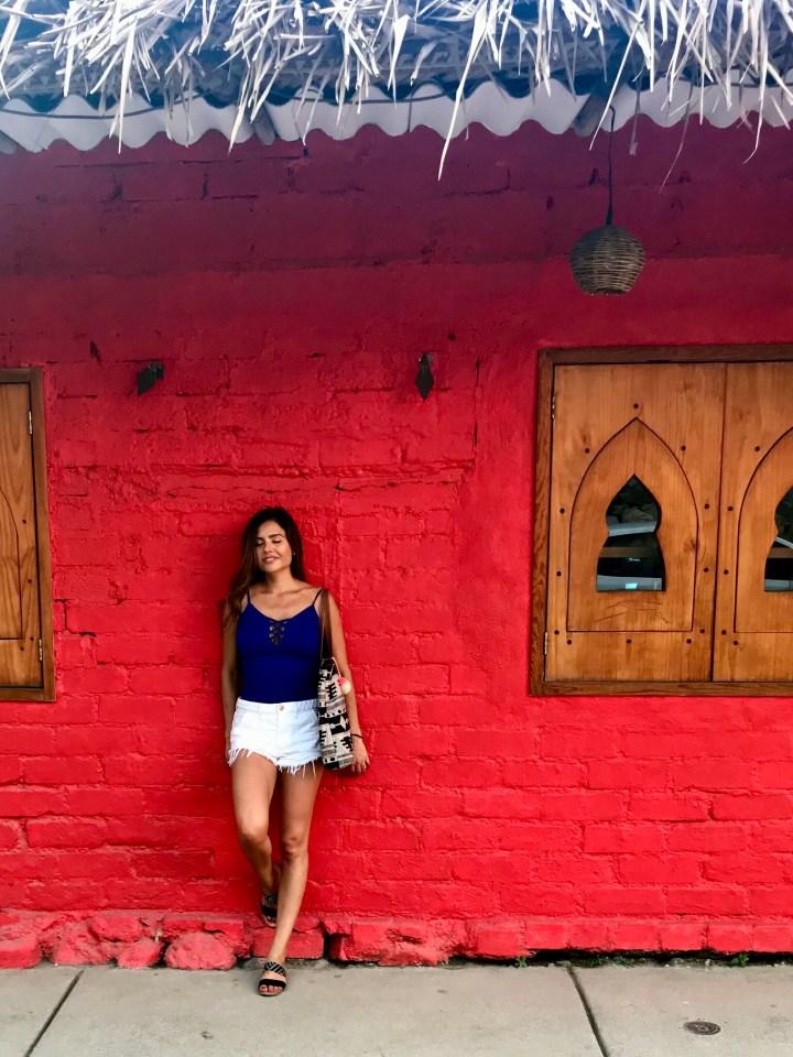 Day Tripping in Sayulita