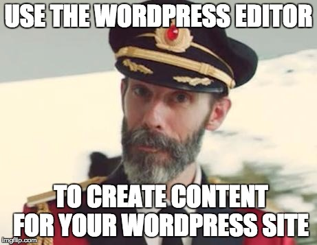 captain obvious wordpress editor
