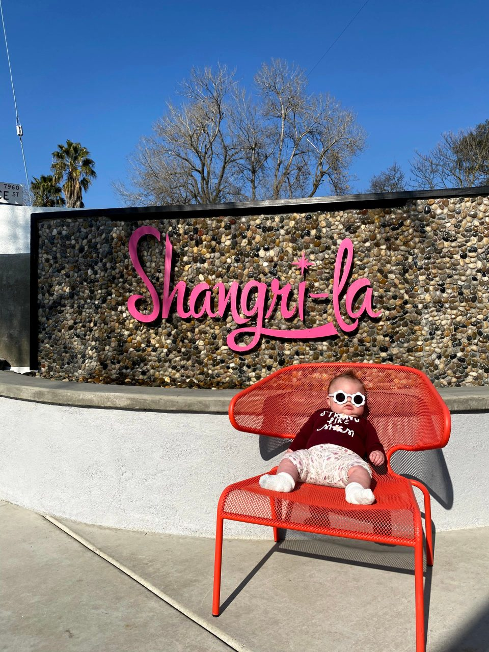 Lily hanging out at Shangri-La