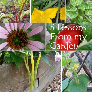 Lessons From My Garden
