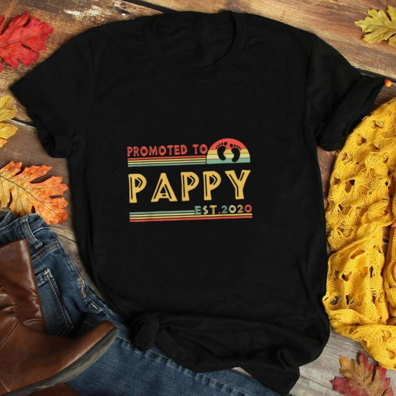 Promoted To Pappy est 2020 Fathers Day Gifts Vintage Retro T Shirt