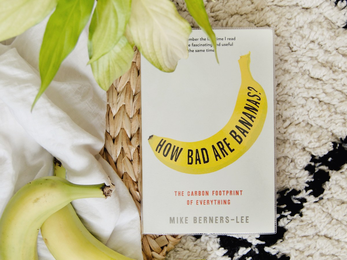 Flatlay of the book with a pair of bananas bottom left and a plant top left. On a checked background.