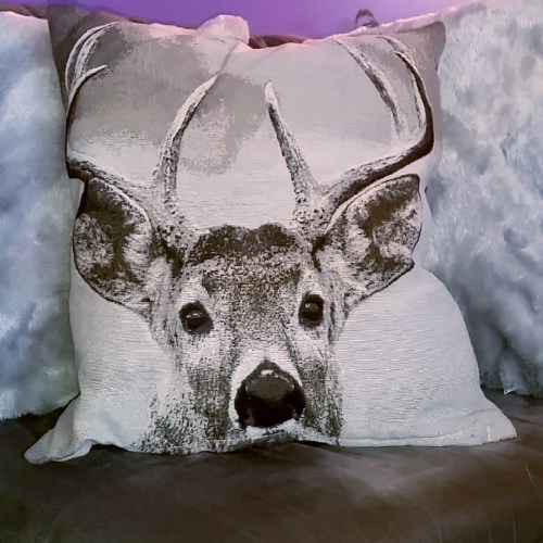 Learn how a simple throw pillow can spruce up any room!