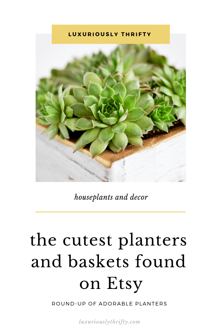 Shop the Cutest Baskets and Planters Found on Etsy | Luxuriously Thrifty