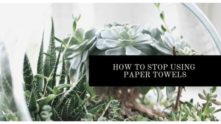 How to stop using paper towels and save money and the planet | Luxuriously Thrifty