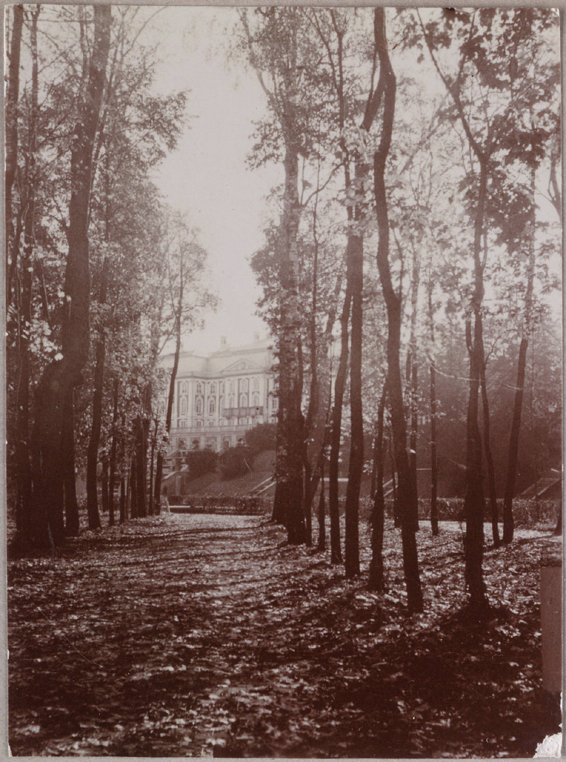 Photography from the private archive of the Romanovs family-Lujon Magazine65