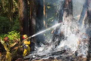 Arcata Fire District fighting fire, Arcata Fire September 14. Photo by Ian Benjamin Finnegan Thompson