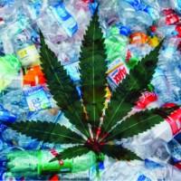 The future of plastic: Hemp