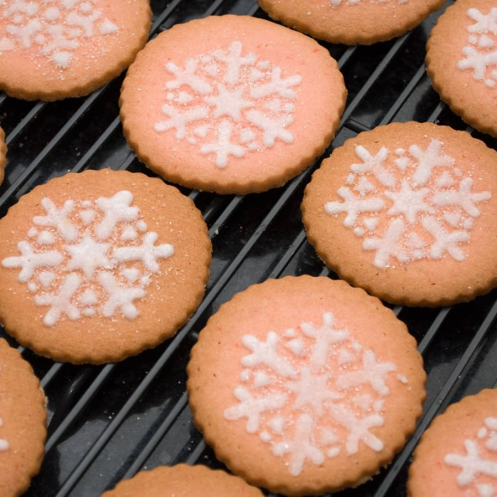 Maraschino Cherry Butter Cookies with Stenciled Icing