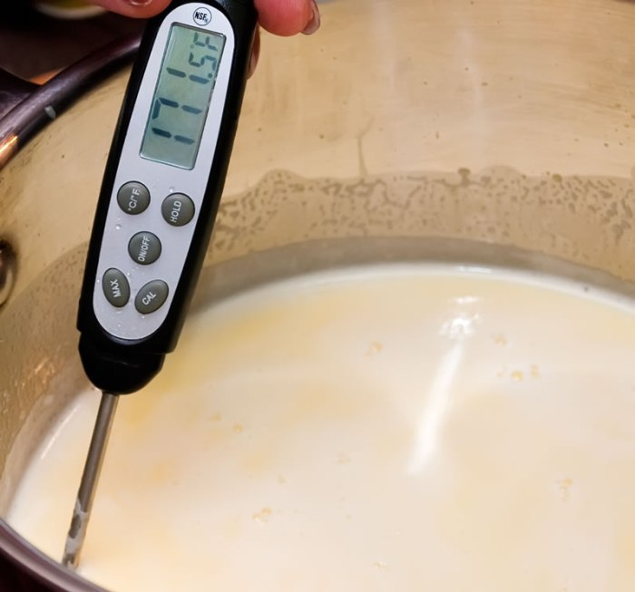 Strawberry Basil Sour Cream Gelato | LunaaCafe