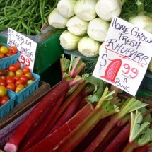 Rhubarb for Sale at 2009 Prices