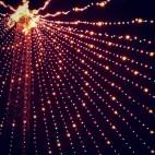 Zilker Christmas Tree
