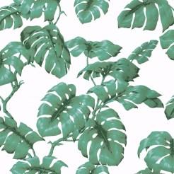tarovine-green-white