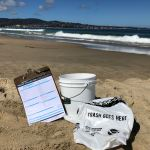 California's Coastal Cleanup Day