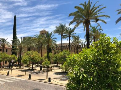 Andrew_Forbes_visits_Cordoba_Andalucia (5)