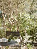 Deluxe_garden_terrace_3