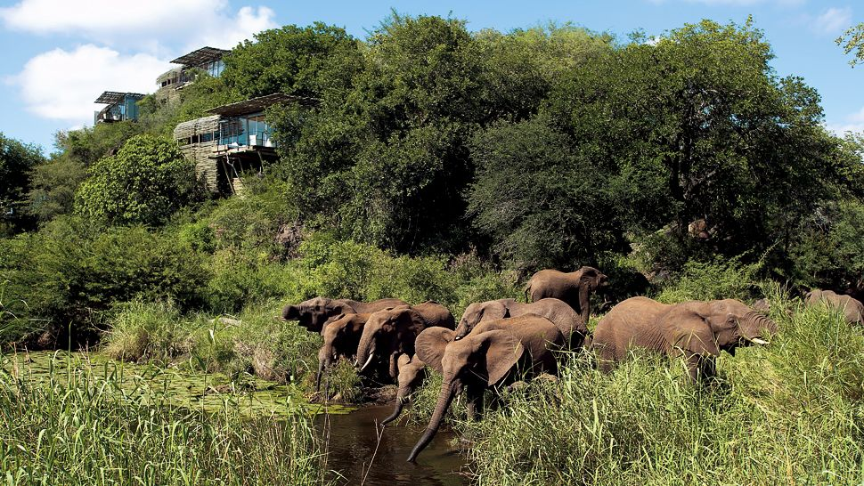 Top 10 Africas Most Luxurious Safari Lodges The Luxury Travel Expert - Singita-luxury-african-game-reserve