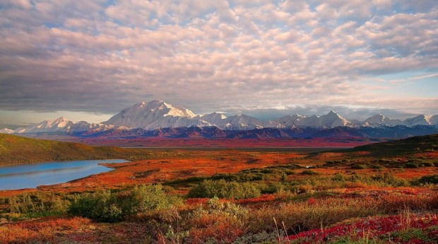DENALI NATIONAL PARK - MOUNT MCKINLEY