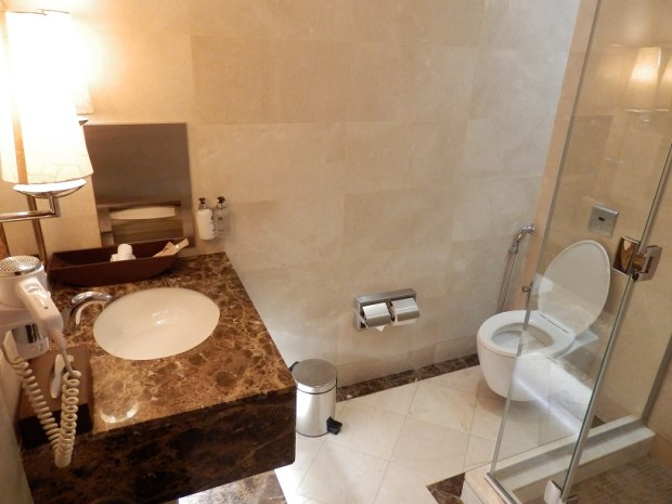 EMIRATES LOUNGE AT DXB: SHOWERS