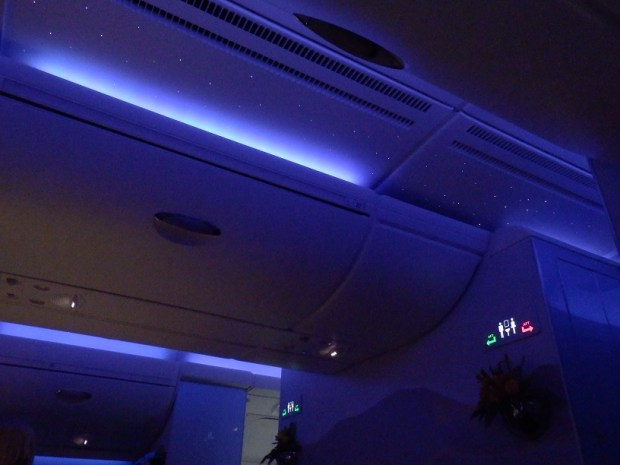 CEILING: STARRY SKY PANELS