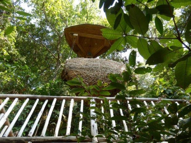 TREEPOD: AFTERNOON TEA