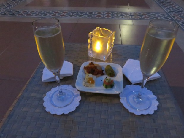 COMPLIMENTARY PREDINNER DRINKS & CANAPES