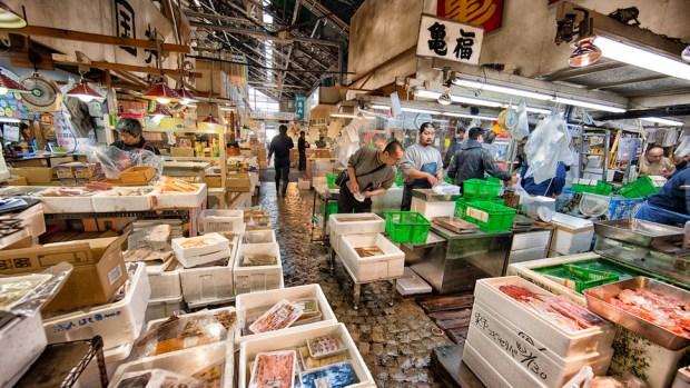 GET UP EARLY FOR TOKYO'S TSUKIJI FISH MARKET