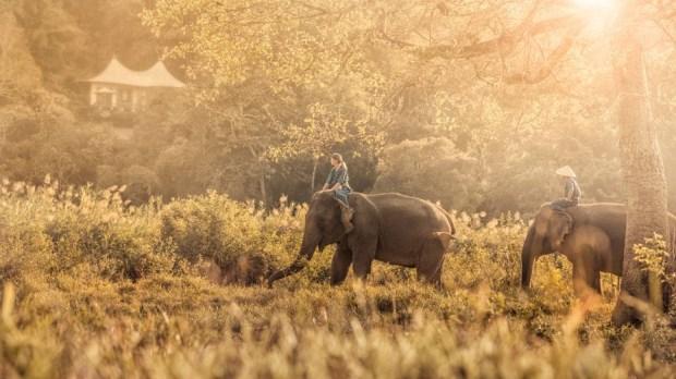 FOUR SEASONS GOLDEN TRIANGLE, THAILAND