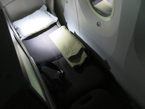 BUSINESS CLASS SEAT (FLAT BED)